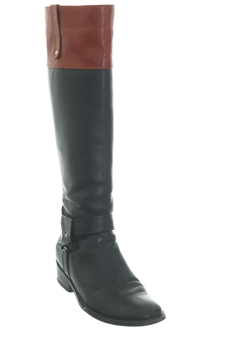 Zapatos color Negro - Sasun